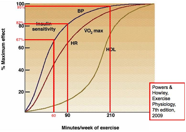 Exercise per week